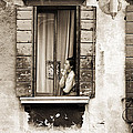Woman Gazing Out Of A Window Contemplating by Stephen Spiller