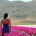 Woman In A Field Of Flowers by Jeff Lowe