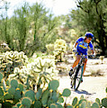 Woman Mountain Biking In Arizona by Scott Markewitz