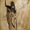 Woman The Forgotten Series 08 by Cynthia Woods
