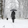 Woman Walking In A Snowy Forest by Mats Silvan