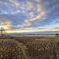 Wonderful Sunset by Ivan Slosar