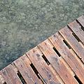 Wood And Sea by Grigorios Moraitis