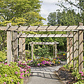 Wood Arbor Over Garden Path by Jit Lim
