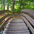 Wood Bridge by Alain Michiels