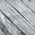Wood by Bruno Rosa