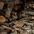 Wood Logs by Mina Isaac