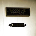 Woodbine Cottage - In Bakewell Town Peak District - England by Doc Braham