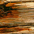 Wooden Abstract by Michael Durst