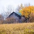 Wooden Autumn Barn by Jim Lepard