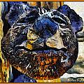 Wooden Bear Sculpture by Barbara Snyder