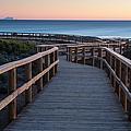 Wooden Boardwalk by Alfredo  Maiquez
