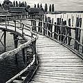 Wooden Boardwalk by Oliver Koch