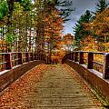 Wooden Bridge by Craig Incardone