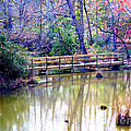 Wooden Bridge Over Pond by Kathy  White