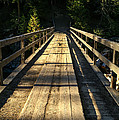 Wooden Bridge by Sue Smith
