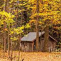 Wooden Cabin In Autumn by Les Palenik