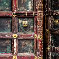 Wooden Door by Catherine Arnas