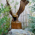 Wooden Eagle by Susan Ince
