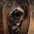 Wooden Eye by AR Harrington Photography