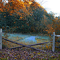Wooden Fence In Autumn by Bill Cannon