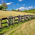 Wooden Fence In Green Landscape by Brch Photography