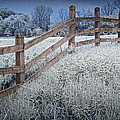 Wooden Fence Of A Friesian Horse Pasture On Windmill Island by Randall Nyhof