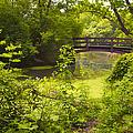 Wooden Foot Bridge by Thomas Woolworth