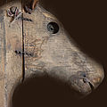 Wooden Horse by Margie Hurwich