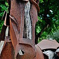 Wooden Horse15 by Rob Hans