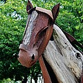 Wooden Horse20 by Rob Hans