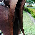 Wooden Horse5 by Rob Hans