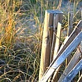 Wooden Post And Fence At The Beach by Nadine Rippelmeyer