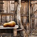 Wooden Shack by Carlos Caetano