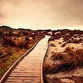 Wooden Steps by Florian Rodarte