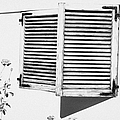 wooden sun shutter blinds on windows of house with roses in the garden in tacoronte Tenerife Canary Islands Spain by Joe Fox