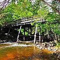Wooden Suspension Bridge by Mikel Classen