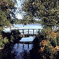 Woodfoot Bridge Of Williams Bay Wi Over Geneva Lake  by Jane Butera Borgardt