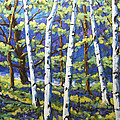 Woodland Birches by Richard T Pranke