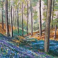 Woodland Blues by Cathy Weaver