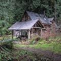 Rustic Cabin by Jane Linders