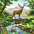 Woodland Harmony by MGL Meiklejohn Graphics Licensing