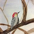 Woodpecker by Joel Watsky