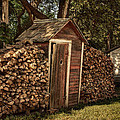 Woodpile And Shed by Nikolyn McDonald