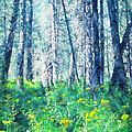 Woods 1 by Pamela Cooper