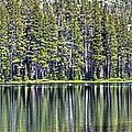 Woods Lake 4 by SC Heffner