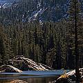 Woods Lake by Lynn Bawden