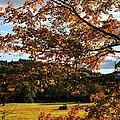 Woodstock Vermont by Edward Fielding