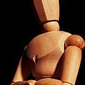 Woody by Gene Tatroe