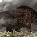 Woolly Rhinoceros by Daniel Eskridge